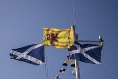 Szkockie flaga macha w wiatrze przeciw jasnemu błękitnemu lata niebu Fotografia Royalty Free
