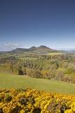 Szkockie granicy Obrazy Royalty Free