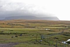 szkockie krajobrazowe tło góry Obrazy Royalty Free