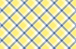 szkockiej kraty tekstura Fotografia Royalty Free