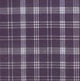 szkockiej kraty tkaniny tekstura Zdjęcia Royalty Free