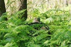 szkolenie bojowe wojskowe Zdjęcia Royalty Free