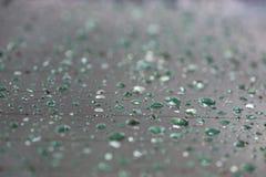 Szmaragdowi Raindrops Zdjęcie Royalty Free