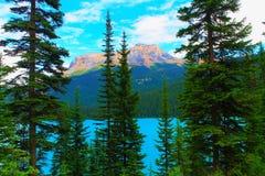 szmaragdowy Canada brytyjski jezioro Columbia lokalizować park narodowy yoho obrazy royalty free
