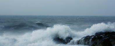 szorstcy morza Zdjęcie Stock