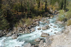 Szorstka halna rzeka obraz royalty free