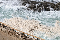 Szorstka kipiel, Fuerteventura Zdjęcie Stock
