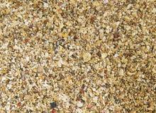 Szorstka plażowa piasek tekstura obraz stock