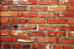 Szorstki ściana z cegieł tło Fotografia Stock