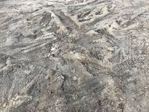 Szorstki opony stąpania ślad na ziemi lub glinie Obrazy Stock