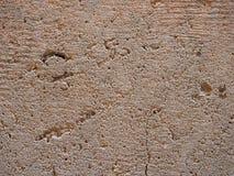 Szorstki porowaty jasnobrązowy dołkowaty wapnia tło zdjęcie royalty free