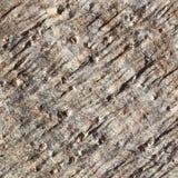 Szorstki skały Lub kamienia tekstury tła szczegół, abstrakta wzór Obrazy Royalty Free