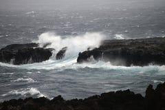 szorstkie morza Zdjęcia Royalty Free