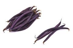szparagowej fasoli cynaderki zdjęcie stock