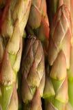 szparagowy tła szparagowy zakończenie Obrazy Royalty Free