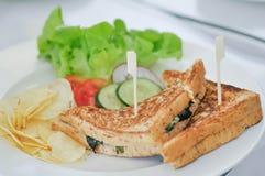 Szpinak kanapka lub jarzynowa kanapka obraz stock