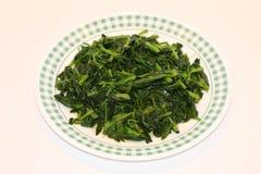 szpinak smażony zielony walcowane Fotografia Royalty Free