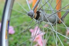 Szprychy bicykl i kwiaty na ziemi w jawnym parku Zdjęcia Stock