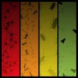 sztandarów cztery insekta pająk Obrazy Stock