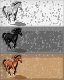 sztandarów konia bieg Zdjęcie Royalty Free