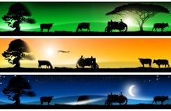 sztandarów wsi fantastyczni krajobrazy trzy Ilustracja Wektor
