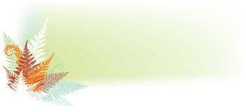 sztandar abstrakcjonistyczna paproć Obraz Royalty Free