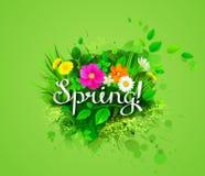 sztandar kwitnie wiosna ilustracja wektor