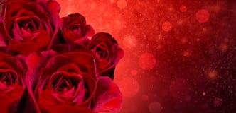 Sztandar rewolucjonistki róży bokeh czerwony tło przestrzeń wchodzić do tekst fotografia stock