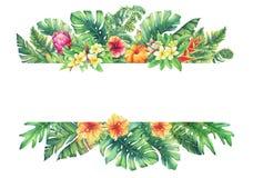 Sztandar z gałąź Protea purpurowymi kwiatami, plumeria, poślubnikiem i tropikalnymi roślinami, zdjęcie stock