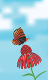 Sztandar z motylem na kwiacie Fotografia Royalty Free