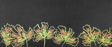 Sztandar Z powrotem szkoła Rysunkowa kreda na blackboard jesieni liściach zdjęcia stock