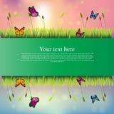 Sztandar z trawą i kwiatami Zdjęcie Stock