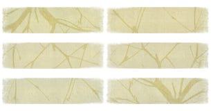 sztandaru gałąź odosobniony z kości słoniowej papieru set Fotografia Royalty Free