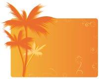 sztandaru pomarańcze palma Obrazy Royalty Free