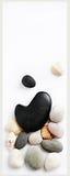 sztandaru seashells zdroju kamienie Obraz Stock