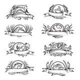 sztandaru set różny karmowy Zdjęcie Royalty Free