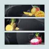 sztandary fruit set Obraz Stock