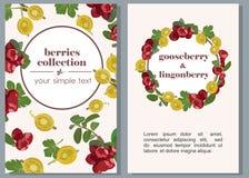 Sztandary z dojrzałymi jagodami agresty i lingonberries również zwrócić corel ilustracji wektora ilustracja wektor