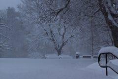 Sztokholm, Szwecja, Luty 28 2018 Śnieżny spada puszek w parku z drzewami i ławkami widocznymi, obrazy royalty free