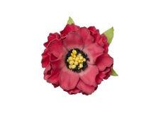 sztuczna czerwień wzrastał Zdjęcia Royalty Free