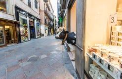 Sztuczna krowa czaije się za sklepowym drzwi zdjęcia royalty free