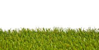 sztuczna trawa Zdjęcia Royalty Free