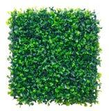 Sztuczna Trawa obraz stock