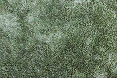Sztuczna trawy tekstura Obraz Stock