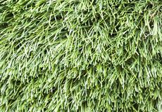 Sztuczna trawy tekstura Zako?czenie, t?o fotografia royalty free