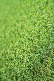 Sztuczna zielona trawa fotografia stock