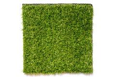 Sztuczna zielona trawa w kwadrata talerzu Obraz Stock