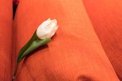 Sztuczne białe róże przeciw pomarańczowemu tłu Zdjęcia Royalty Free