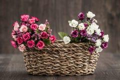 sztuczne kwiaty kolor Obrazy Royalty Free