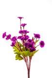 Sztuczne purpury kwiaty Fotografia Stock